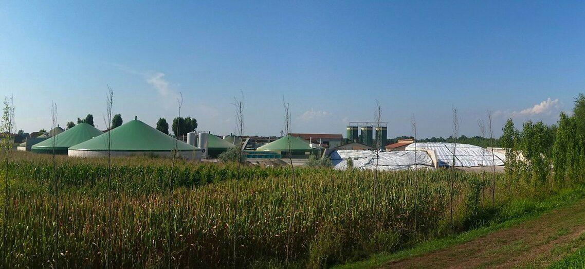 Fonti rinnovabili: cosa fare per creare un piccolo impianto a biomasse e sfruttare un