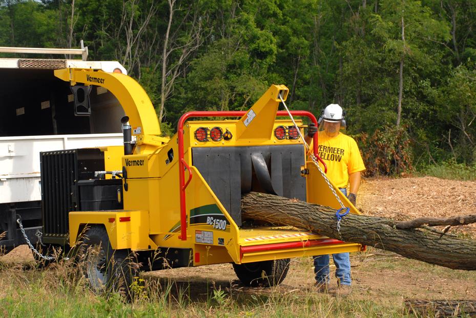 Normativa boschi e foreste: associazioni in prima linea per ridurre la burocrazia e valorizzare la filiera del legno