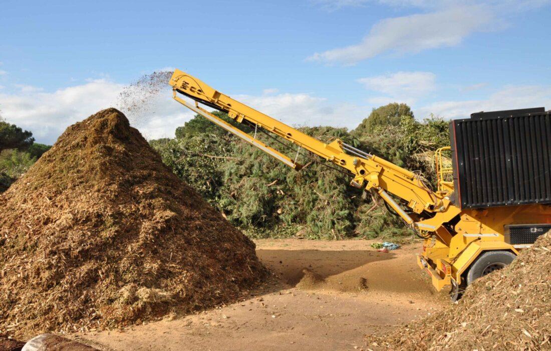 Settori_energia da biomasse_lavorazione 2